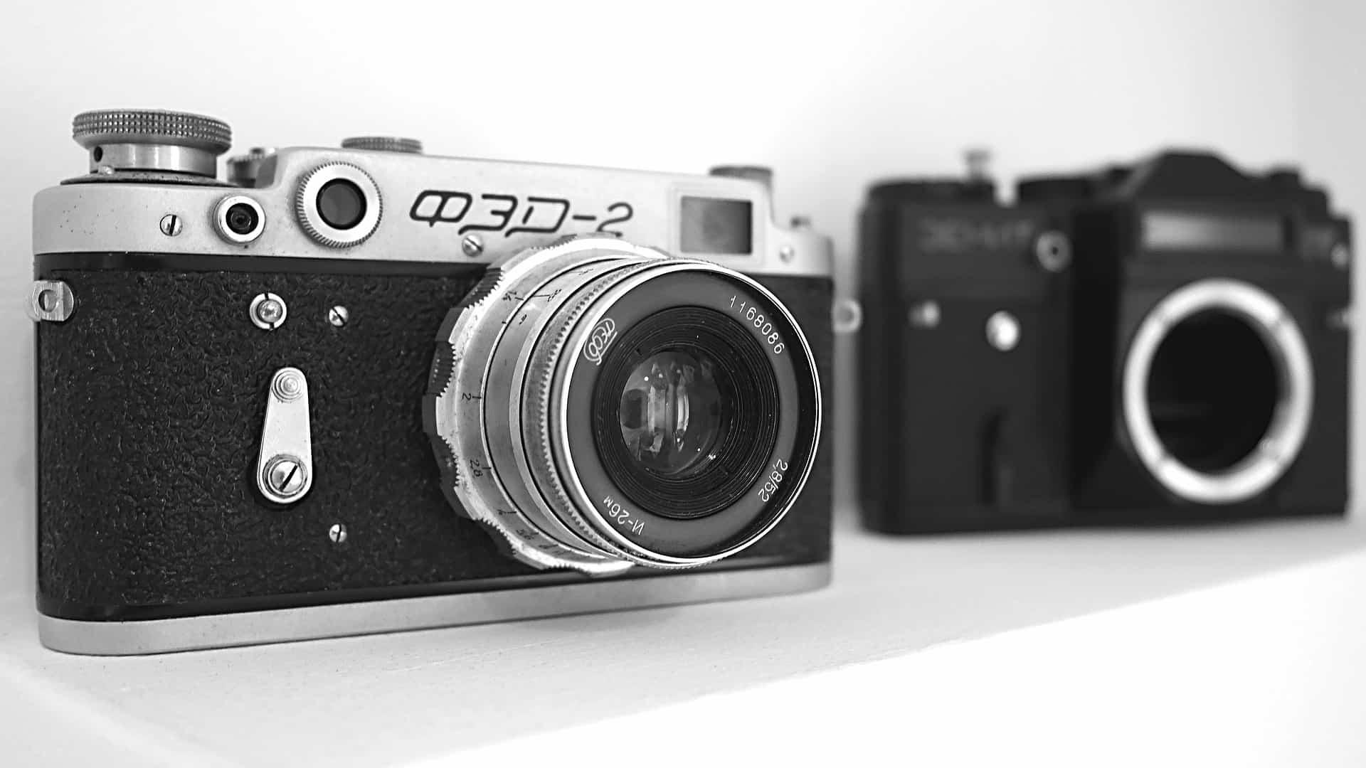 Kameragurt: Test & Empfehlungen (09/20)