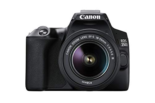 Canon EOS 250D Digitalkamera - mit Objektiv EF-S 18-55mm 3.5-5.6 IS STM (24, 1 Megapixel, 7, 7 cm (3 Zoll) Vari-Angle Display, APS-C-Sensor, 4K, Full-HD, DIGIC 8, WLAN, Bluetooth), schwarz